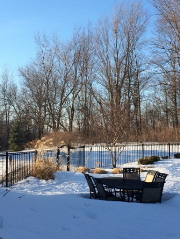 Three days of gorgeous sun and over-freezing temperatures--woo! But there's still a lot of snow left to melt...