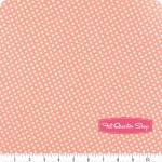 Backing for shabby-chic sampler quilt