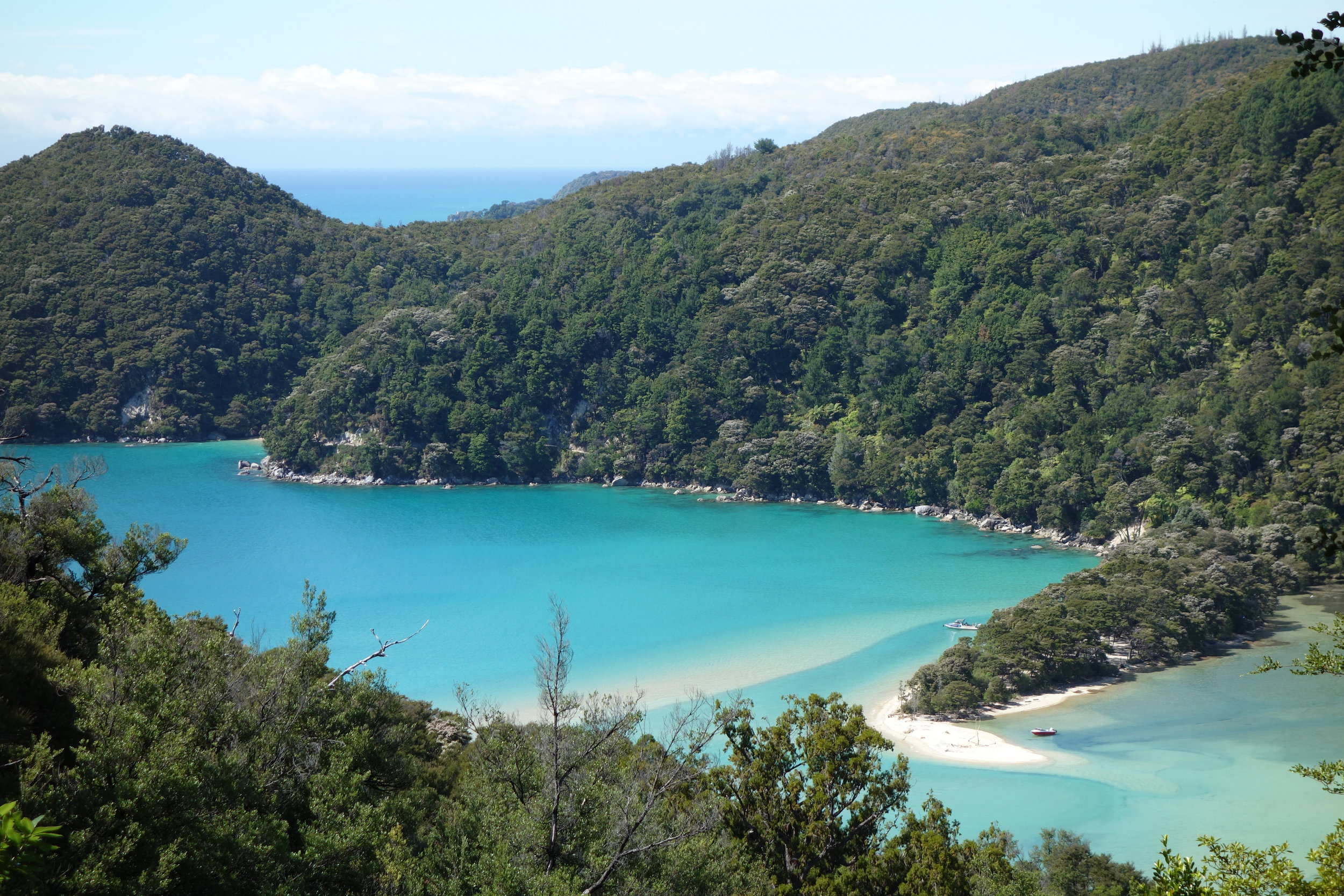 The waters of the Tasman Sea are a striking turquoise color.