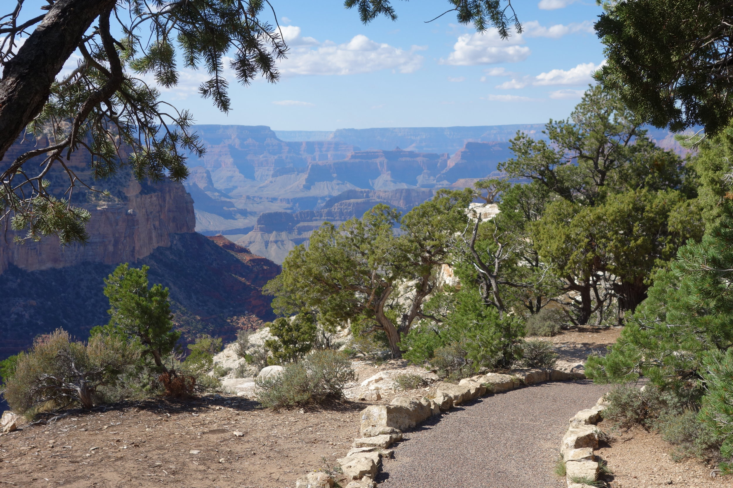 The Grand Canyon Rim Trail can be accessed at many points, and the park shuttle bus system provides a convenient way to return to your starting point.