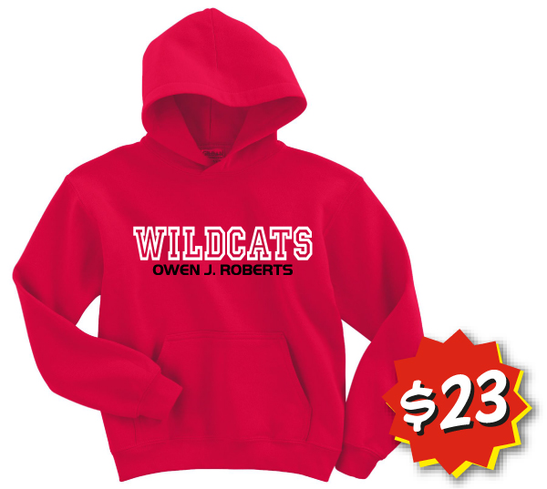 Embroidered Hoodie Sweatshirts in Youth and Limited Adult Sizes