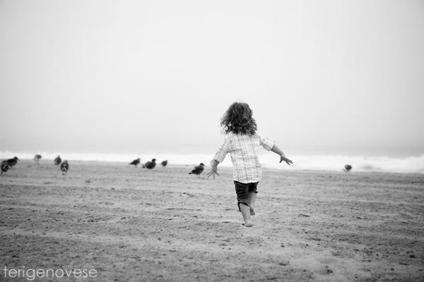 santa monica beach photographer