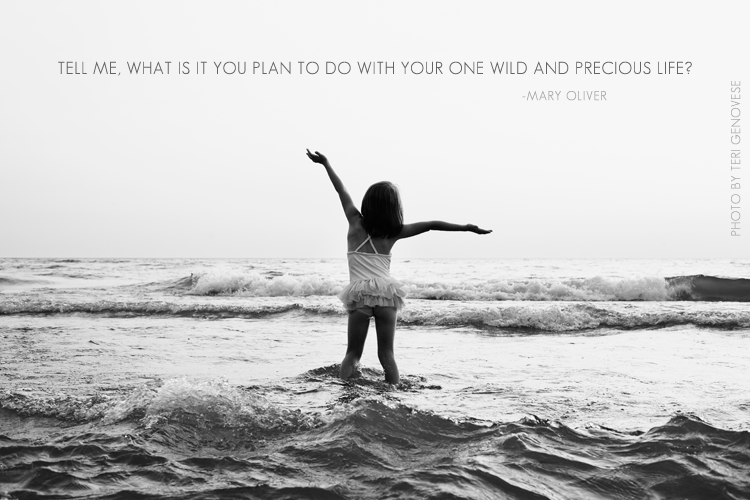 Your wild and precious life.. Inspirational photograph.
