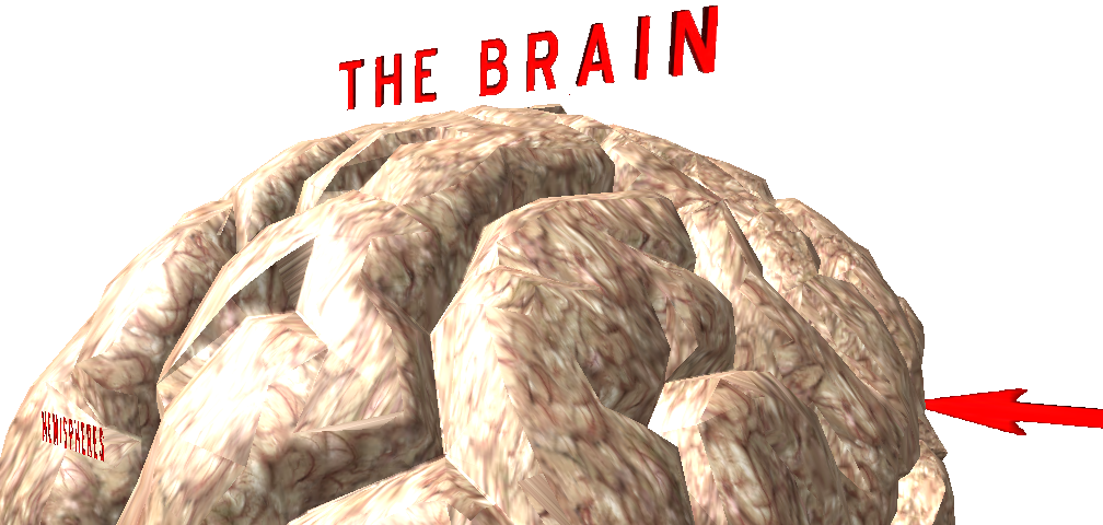 The Brain     Visit Now- Choose Your Platform