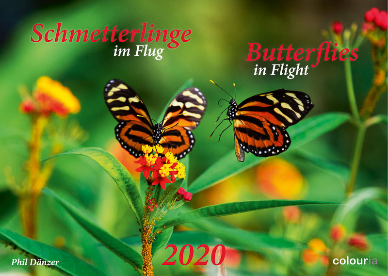 Schmetterlinge_2020_Colouria_srgb_29.06.2019_1.jpg
