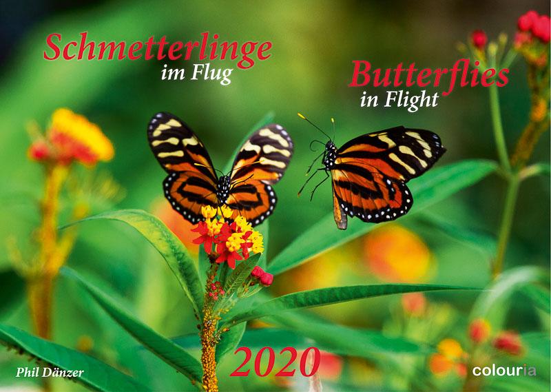 Schmetterlinge_2020_Colouria_srgb_29.06.2019_1.jpg