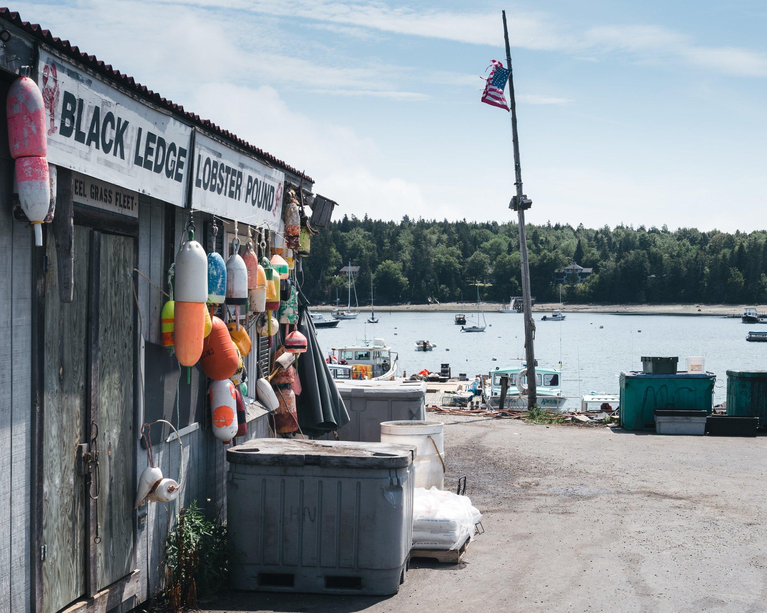 Black Ledge Lobster Pound