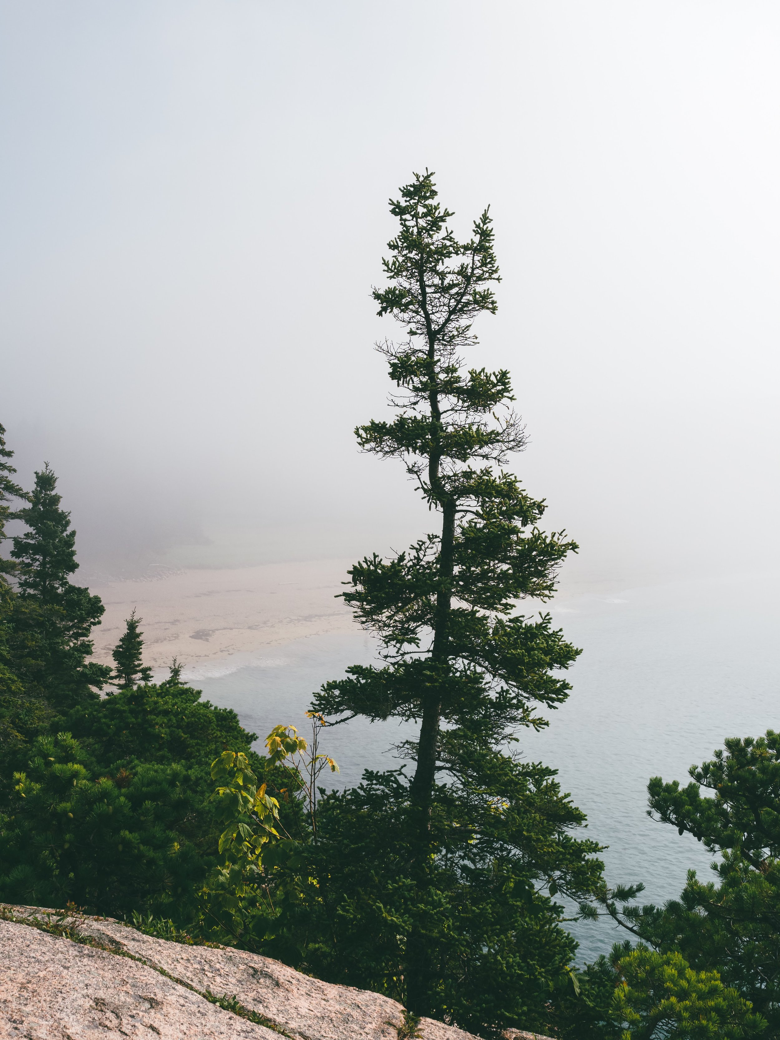 Sand Beach through the fog.