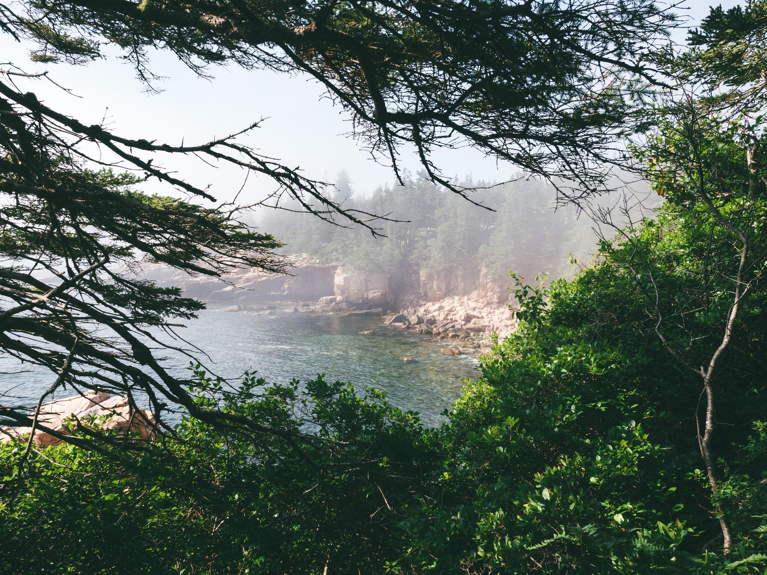 A foggy Monument Cove.