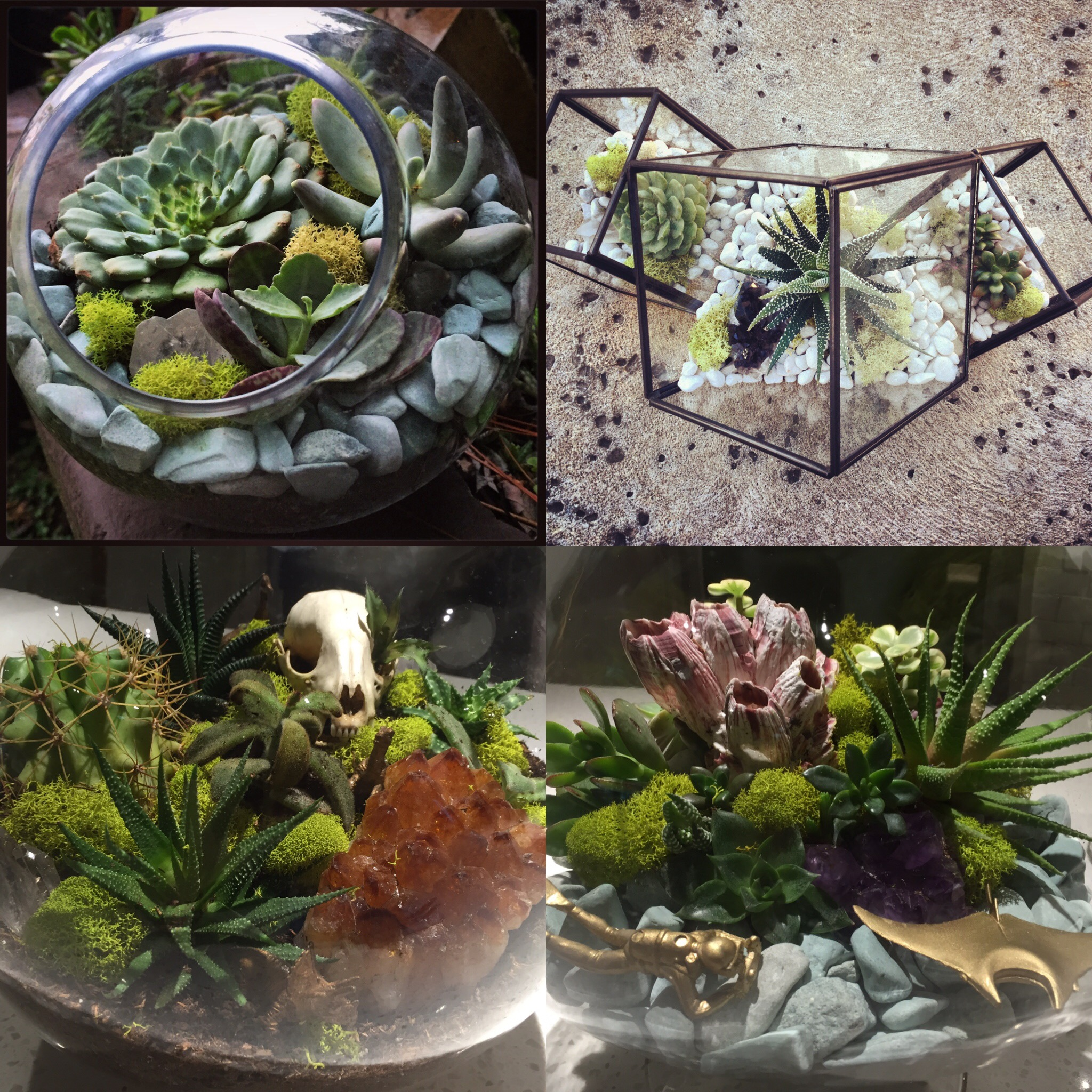 Succulent Terrarium Workshop with Crystal Floyd at CoRK Arts District - Tickets available now!
