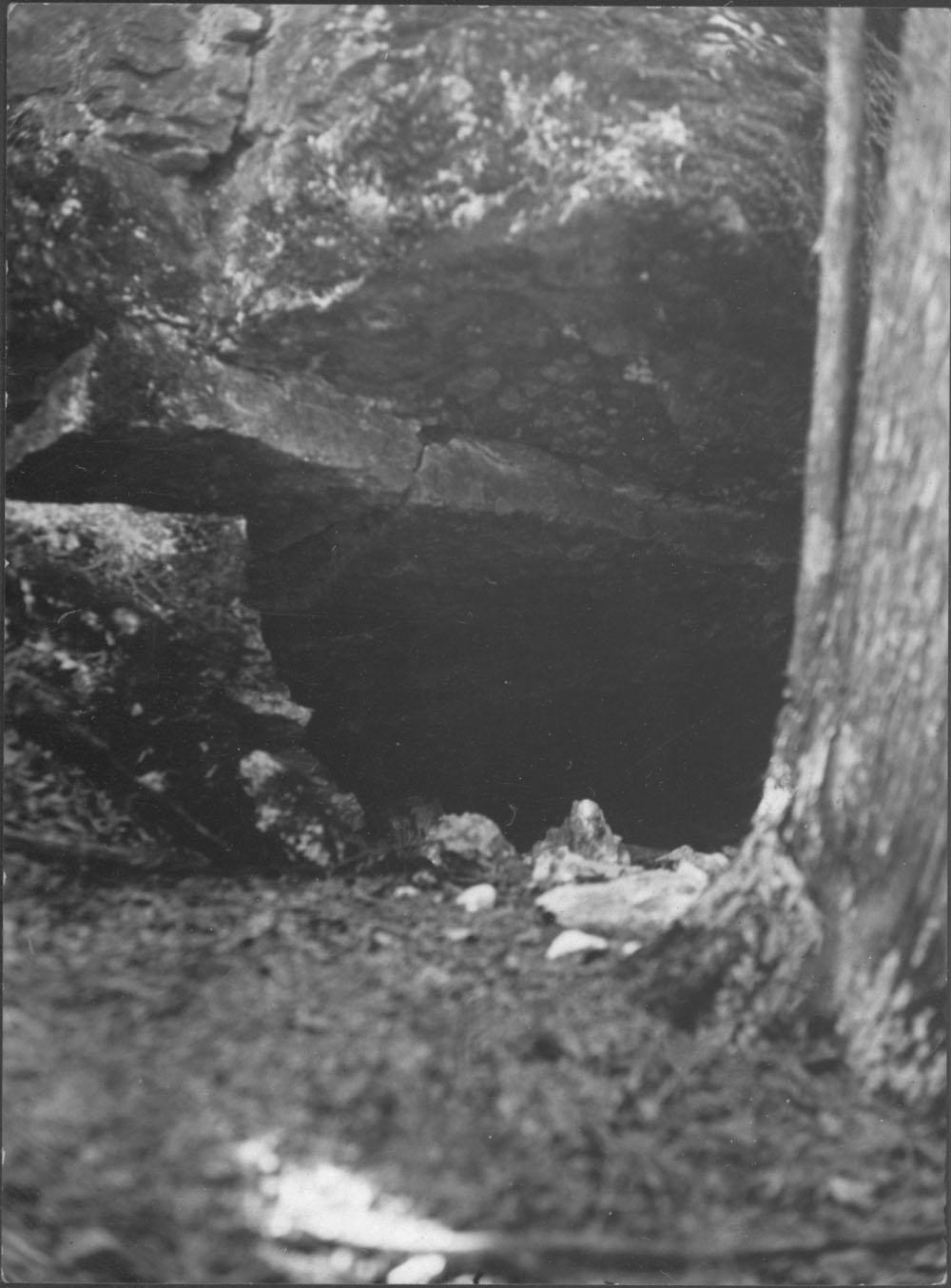 CaveSkeletons_archiveCanada.jpg