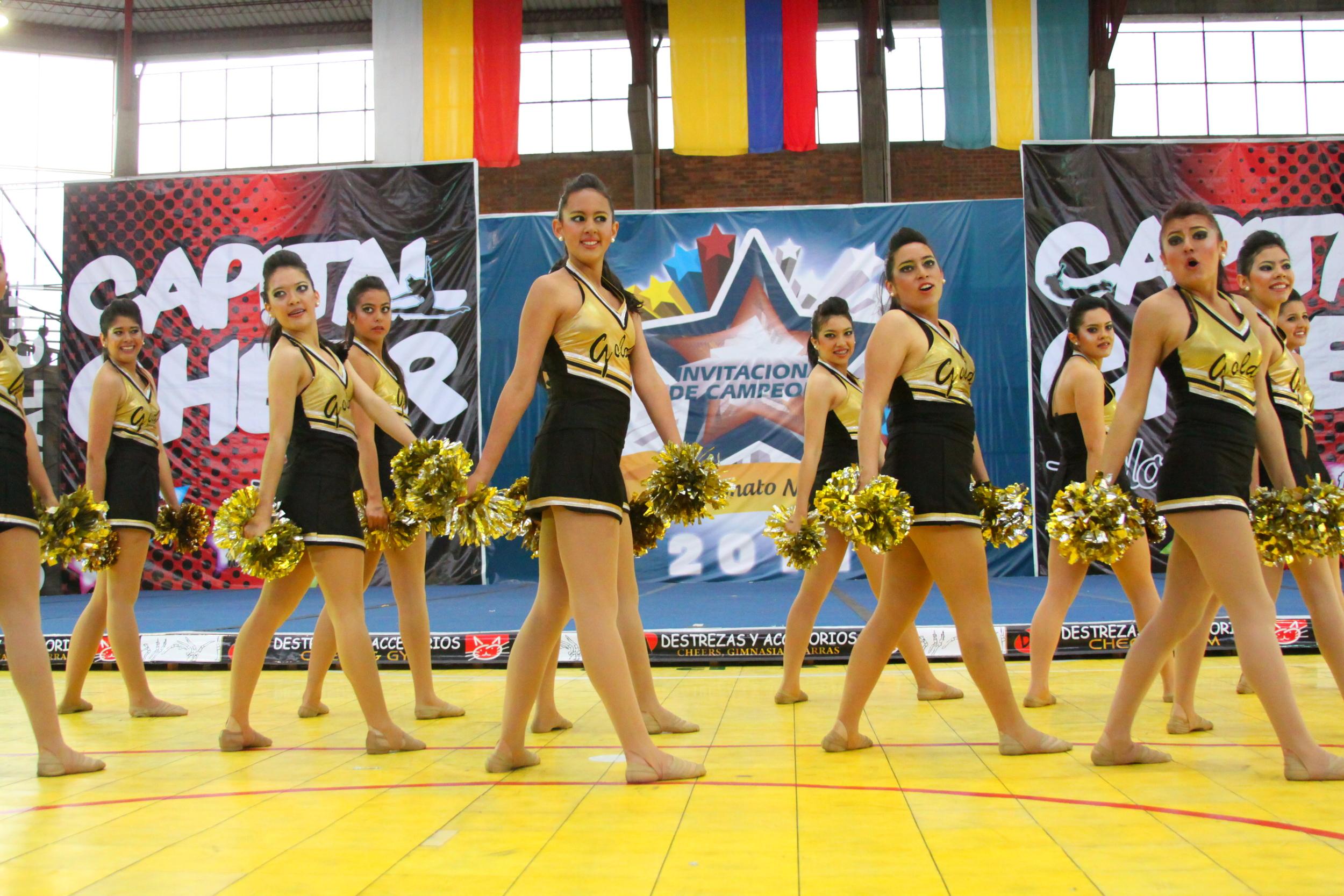 2011 Senior Jazz & Pom Team.JPG