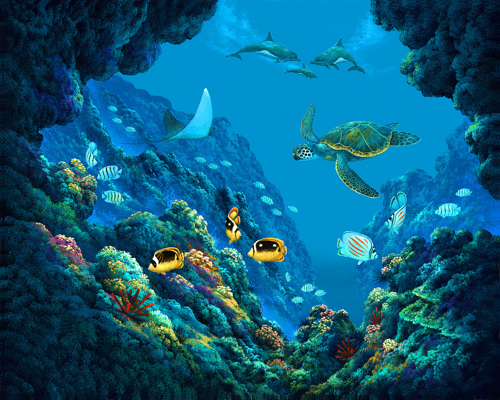 """""""Dolphin Cove"""" 24x30"""