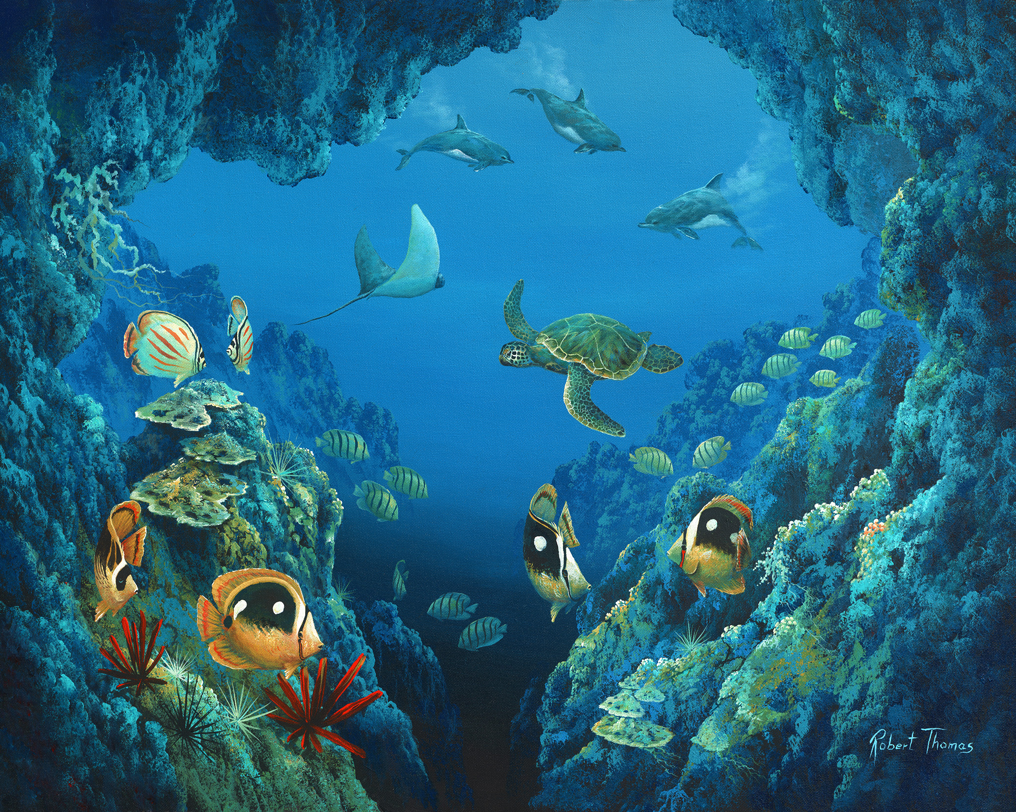 """""""Dolphin Cave"""" 24x30"""