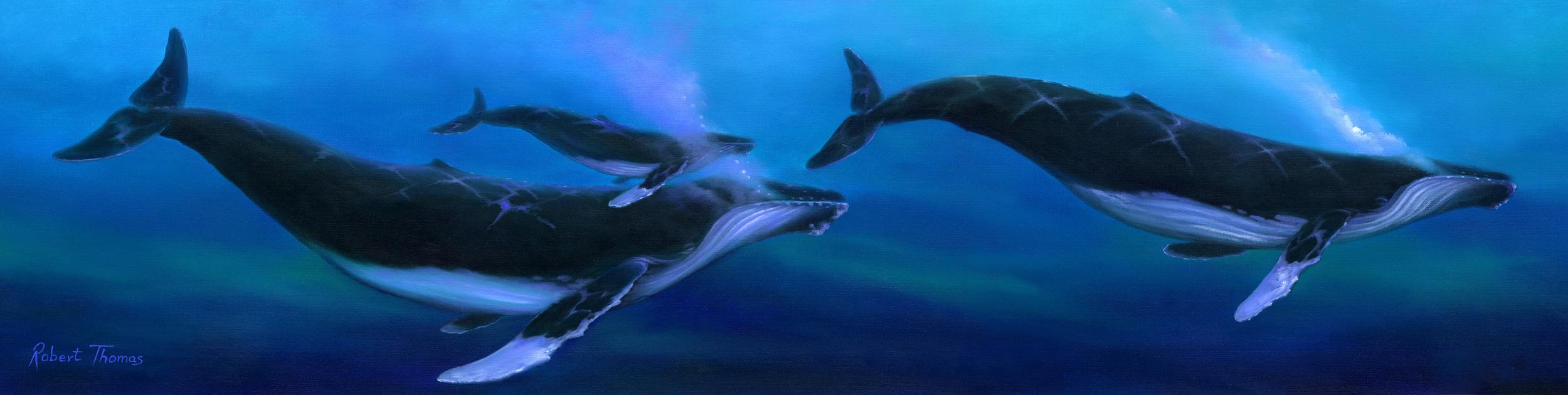 """""""Whale Ohana"""" 12x48"""