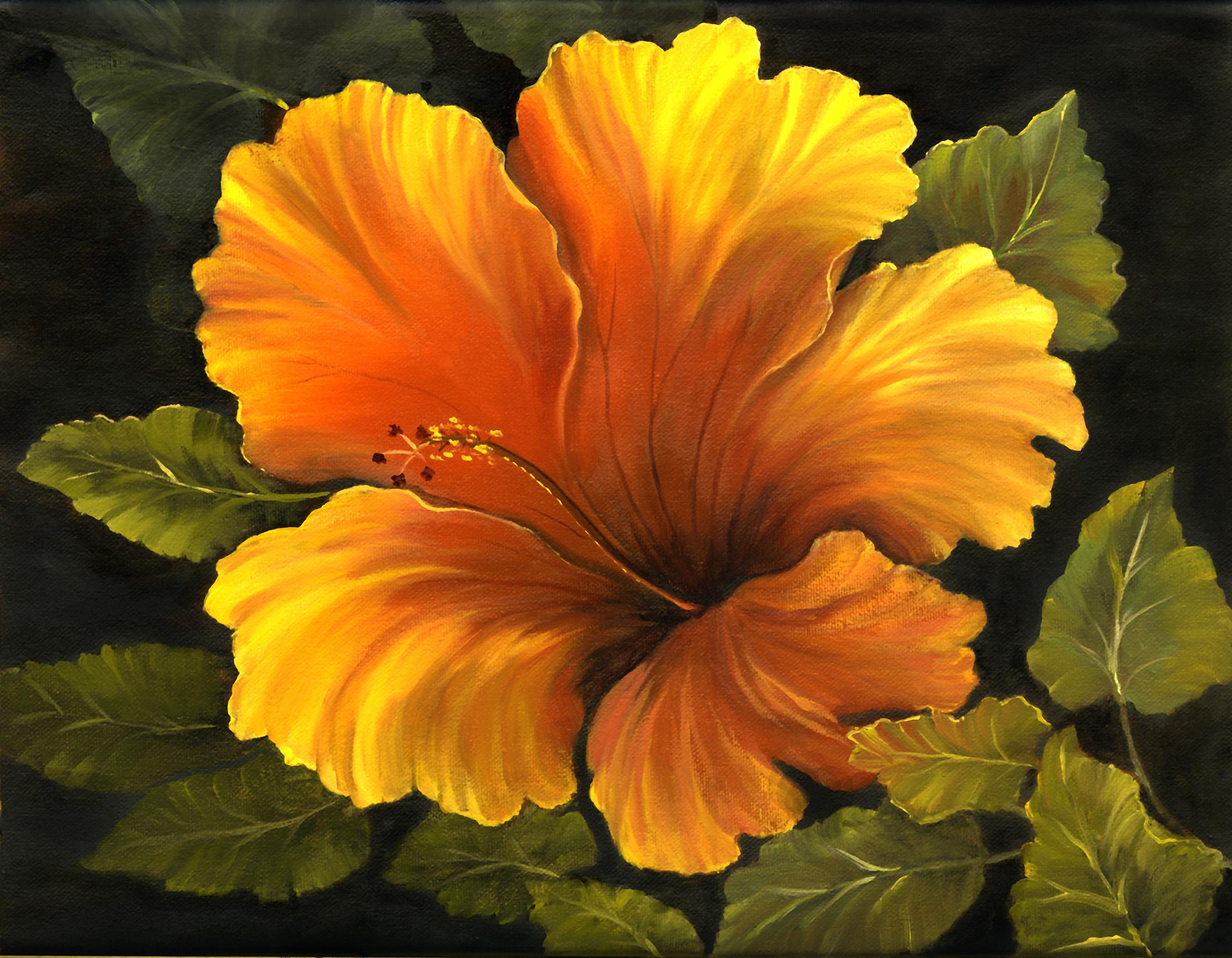 """Hibiscus"" 11x14"