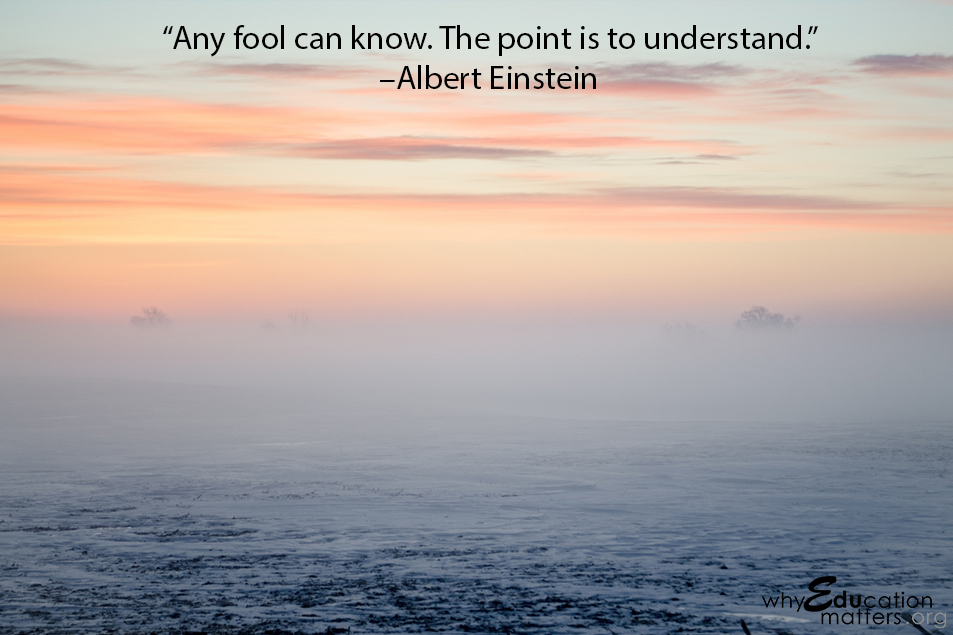 """Any fool can know. The point is to understand.""  –Albert Einstein"
