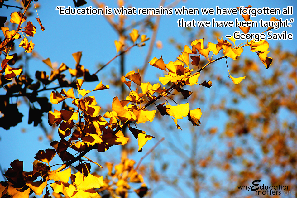 """Education is what remains when we have forgotten all that we have been taught."" – George Savile"