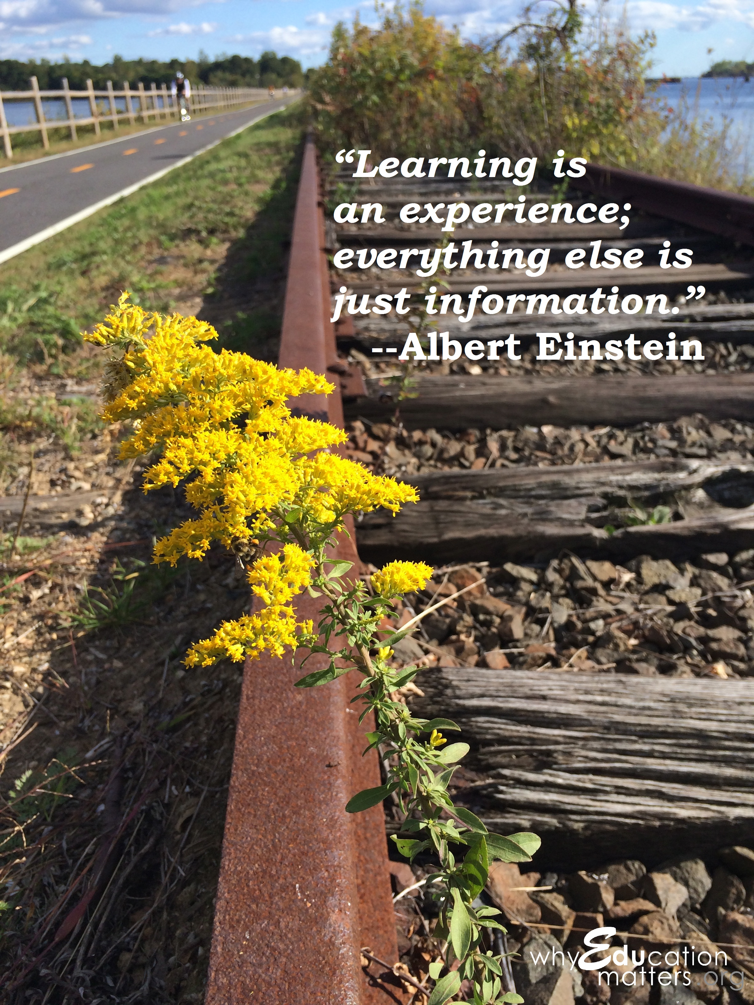 """Learning is an experience; everything else is just information."" --Albert Einstein"