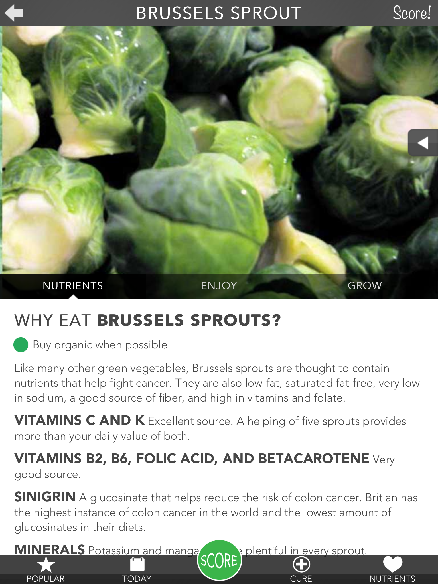 Brussels Sprouts.PNG