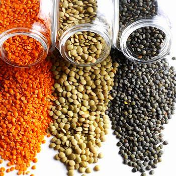 Lentils — Everyday Juicer