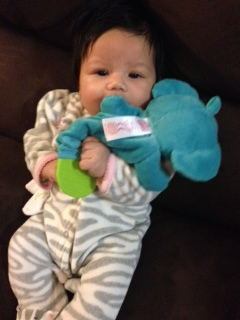 Her current favorite toy- a crinkly elephant!