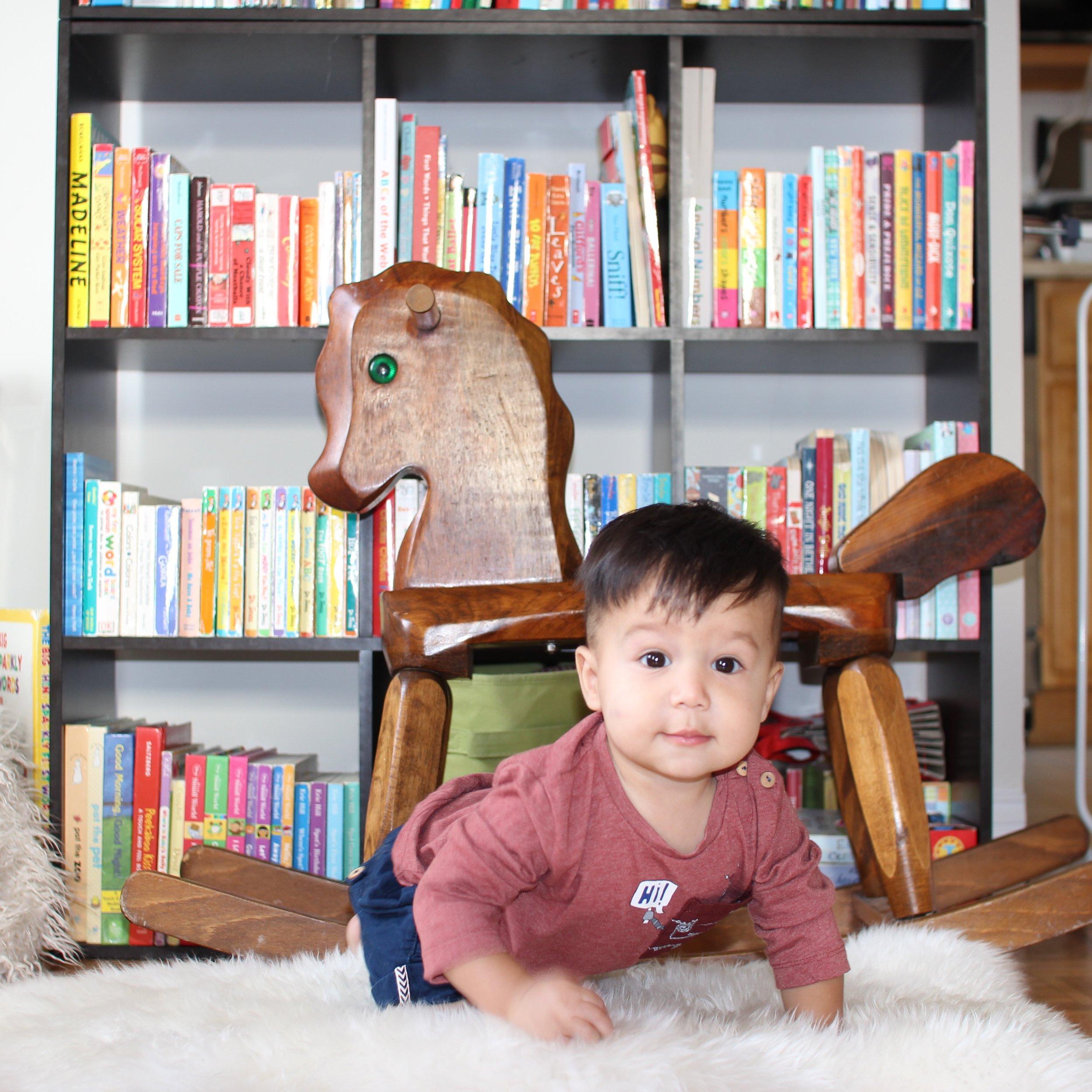 48 weeks old