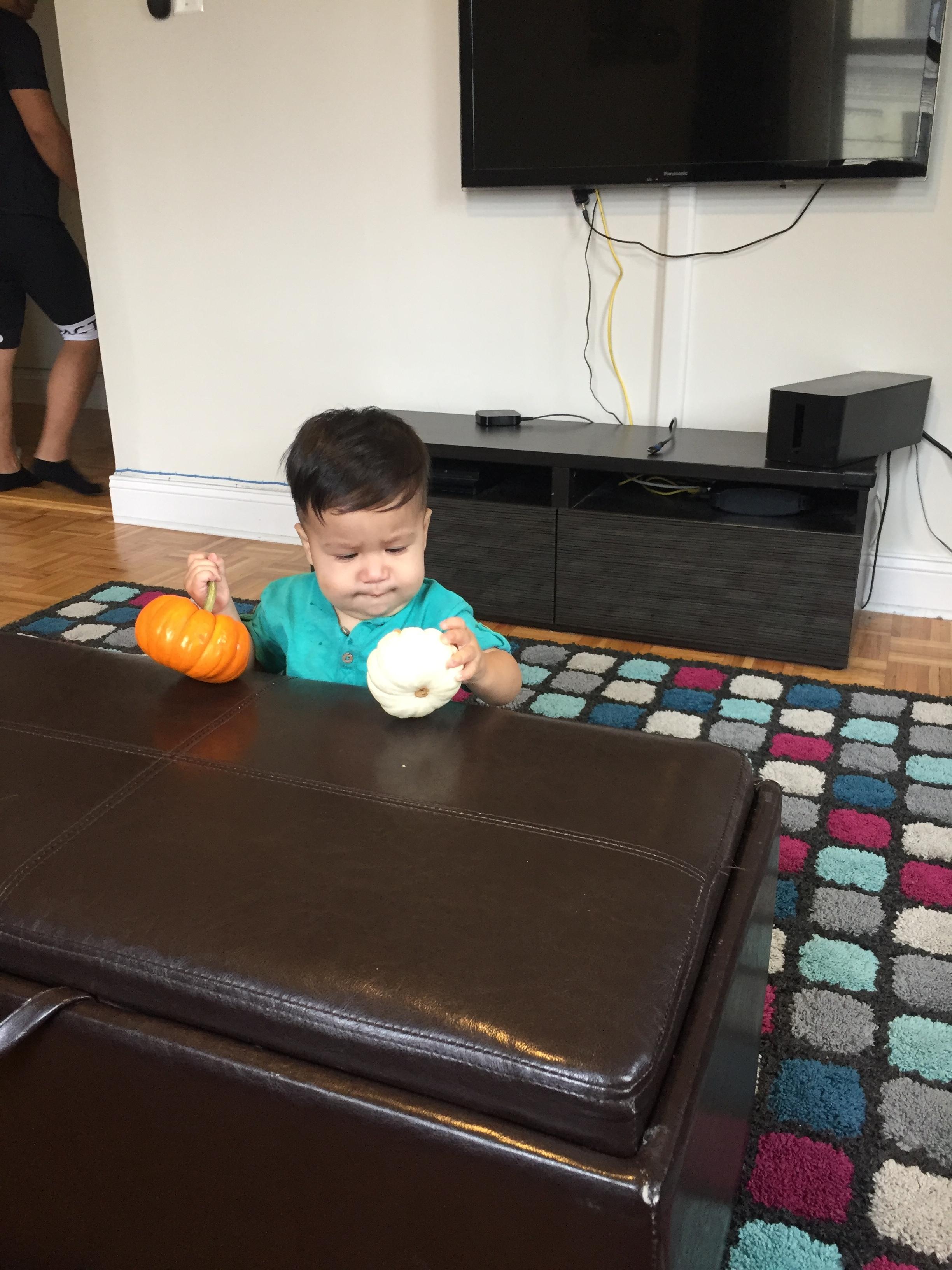 hmm which pumpkin?