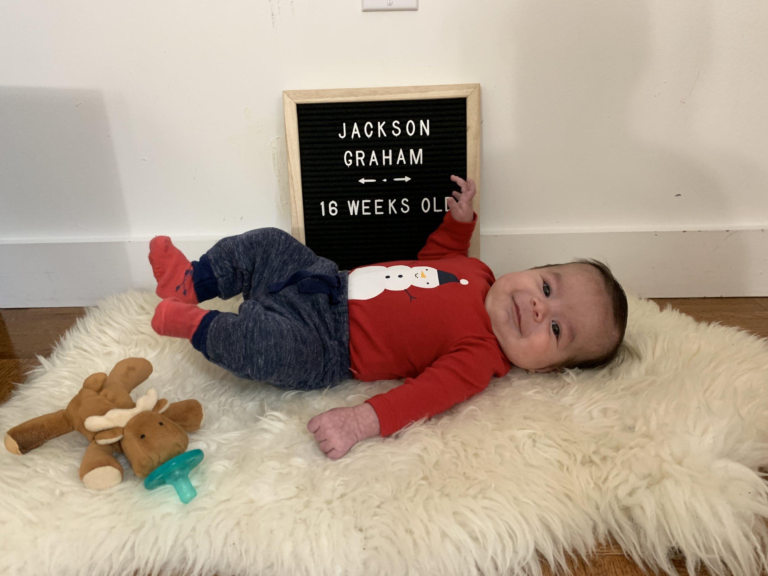 16 weeks old!