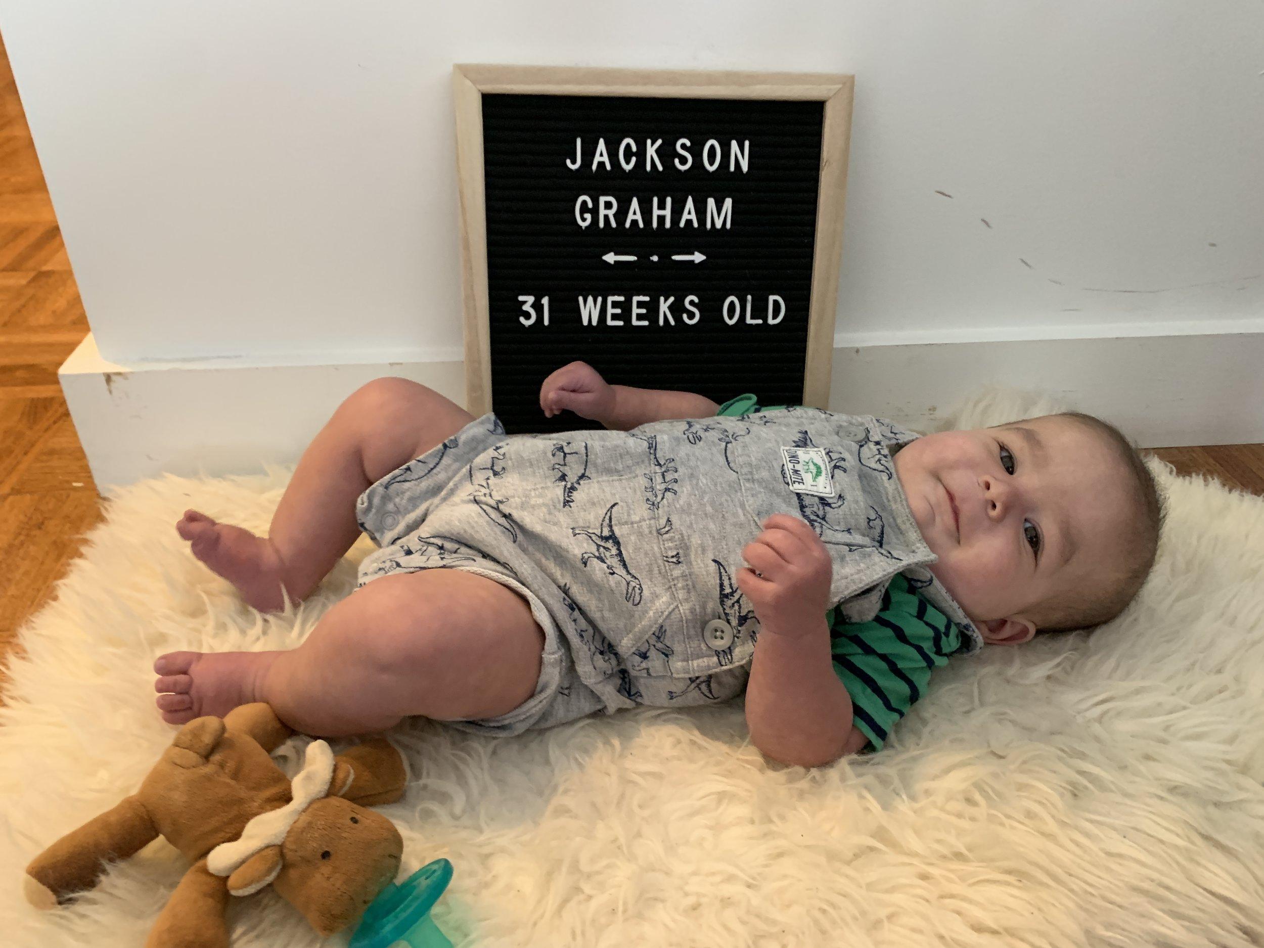 31 weeks old