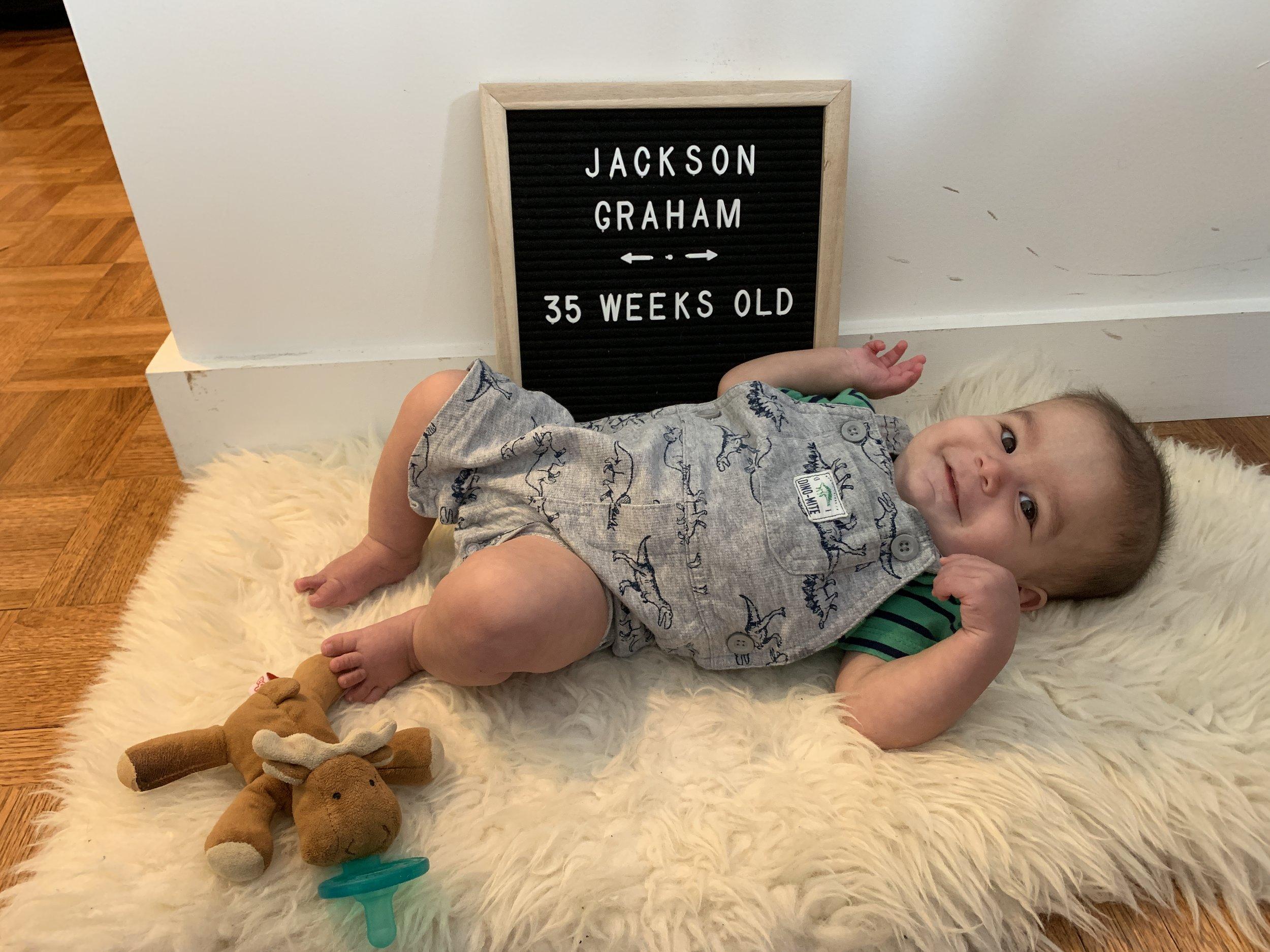 35 weeks old