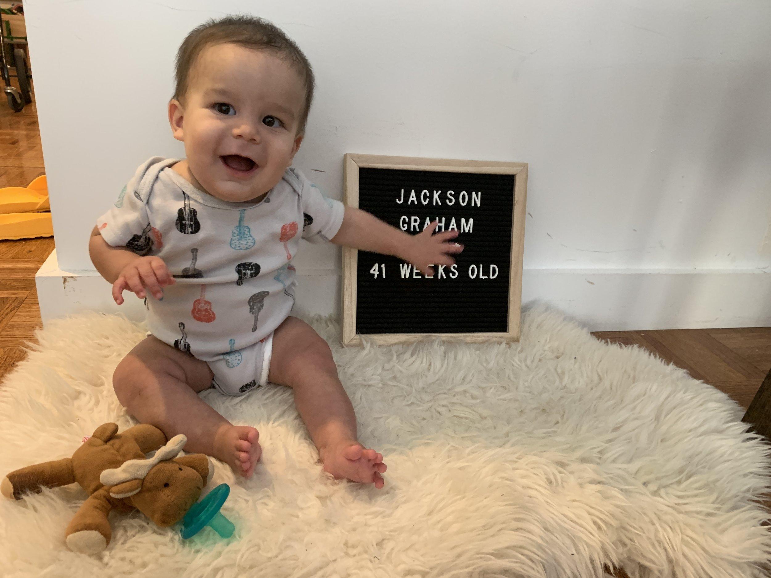 41 weeks old