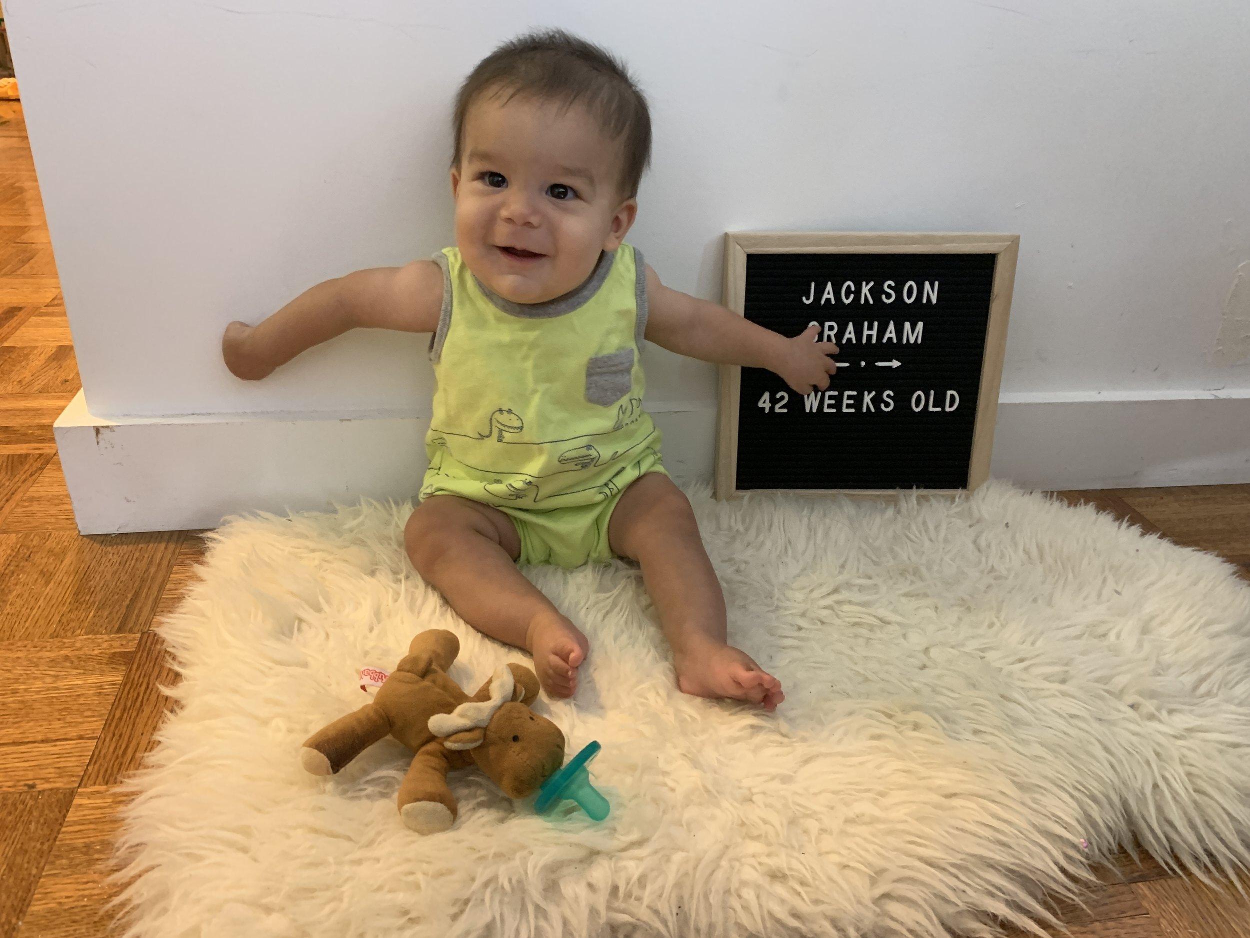 42 weeks old