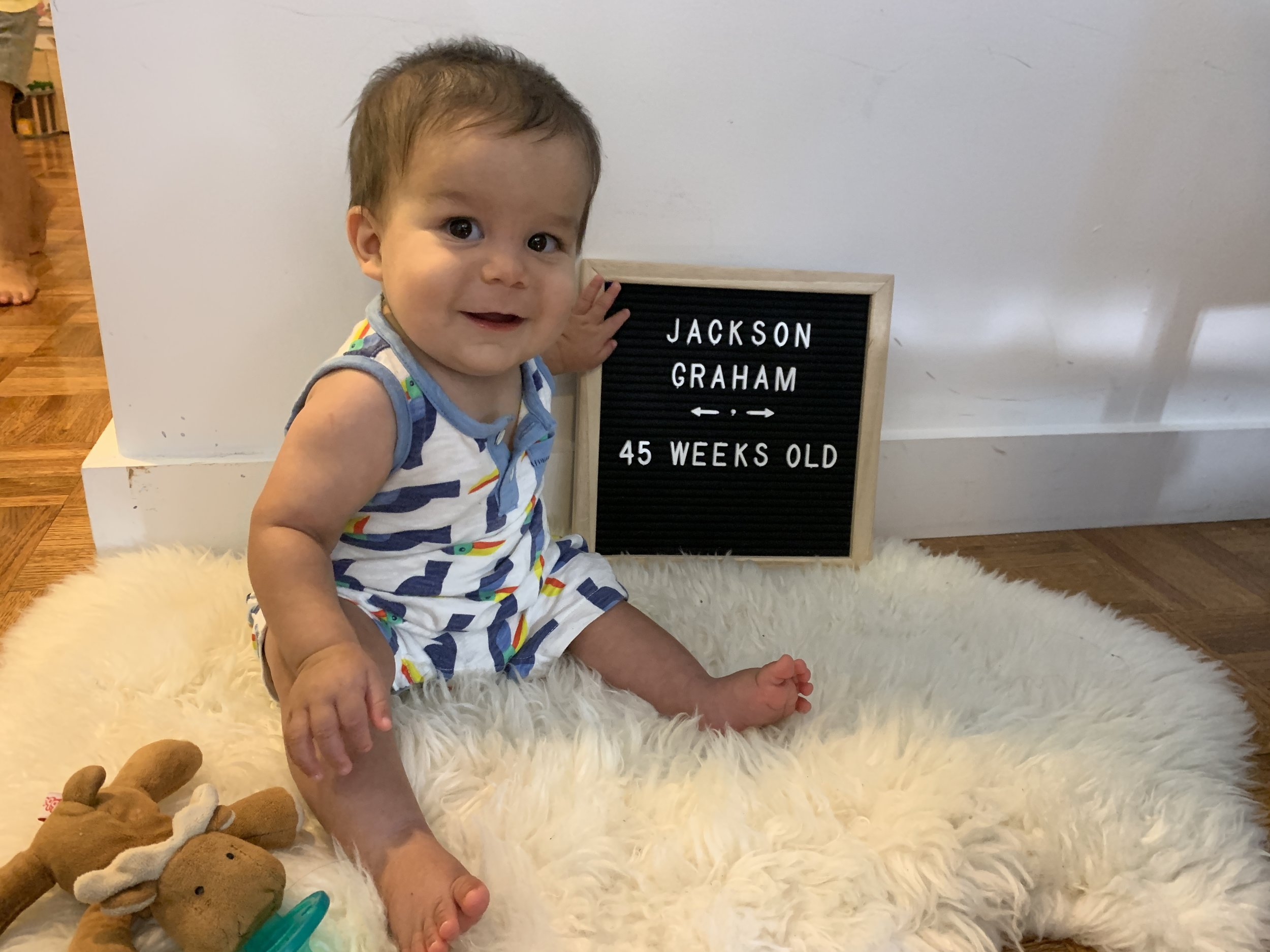 45 weeks old