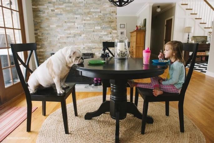 Girl-and-Her-Bulldog02-685x456.jpg