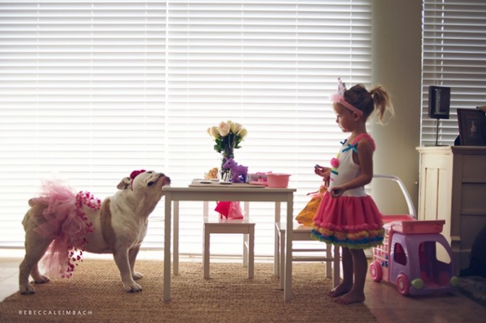 Girl-and-Her-Bulldog14-685x456.jpg