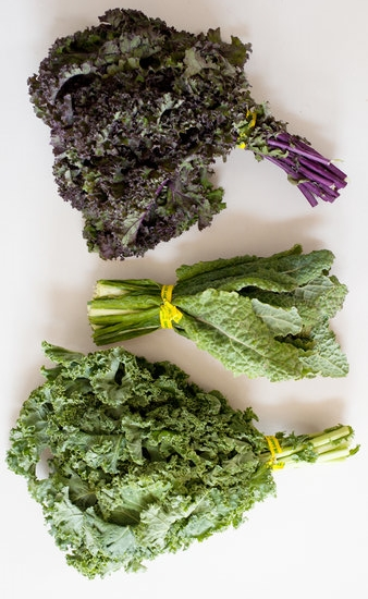 These are the most common types of kale found at the grocery store. From top to bottom:Purple Kale, Dino Kale and Green Kale.
