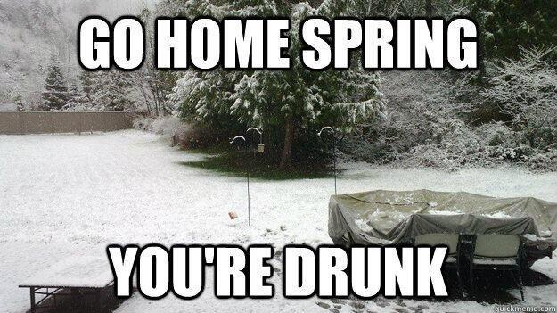 """""""Spring"""" in Boulder"""