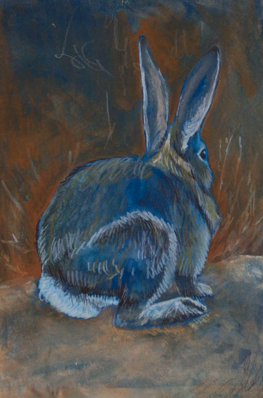 JT_rabbit1.jpg