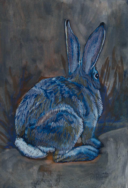 JT_rabbit2.jpg