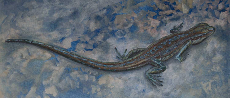 Lizard. Mixed media on cyanotype print