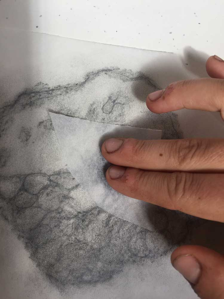 Two - Rub graphite all over the back of the drawing so it can be transferred