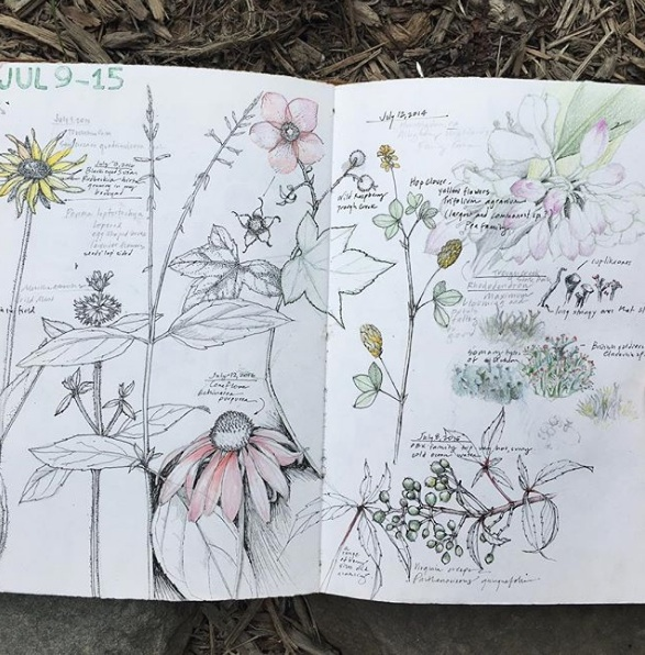 A spread from Lara's Perpetual Journal