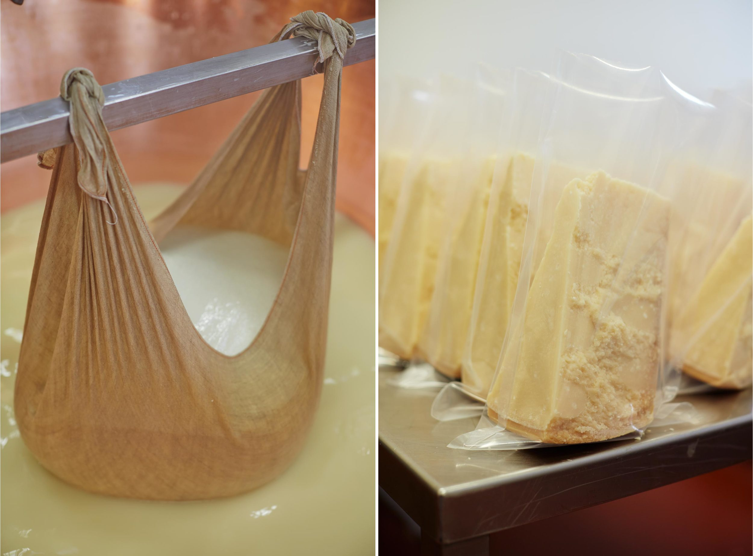 cheese55.jpg