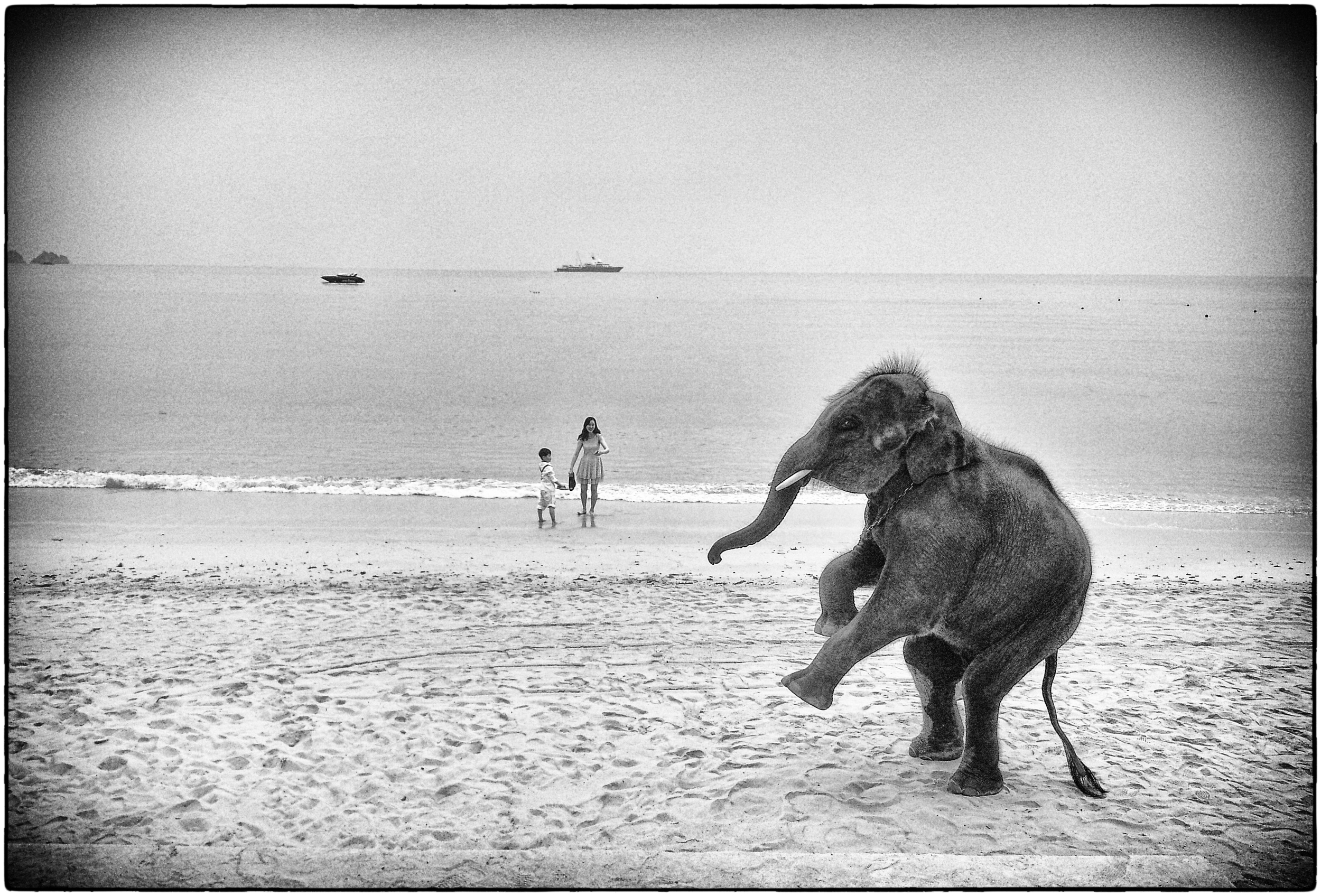 beachwedding03.jpg