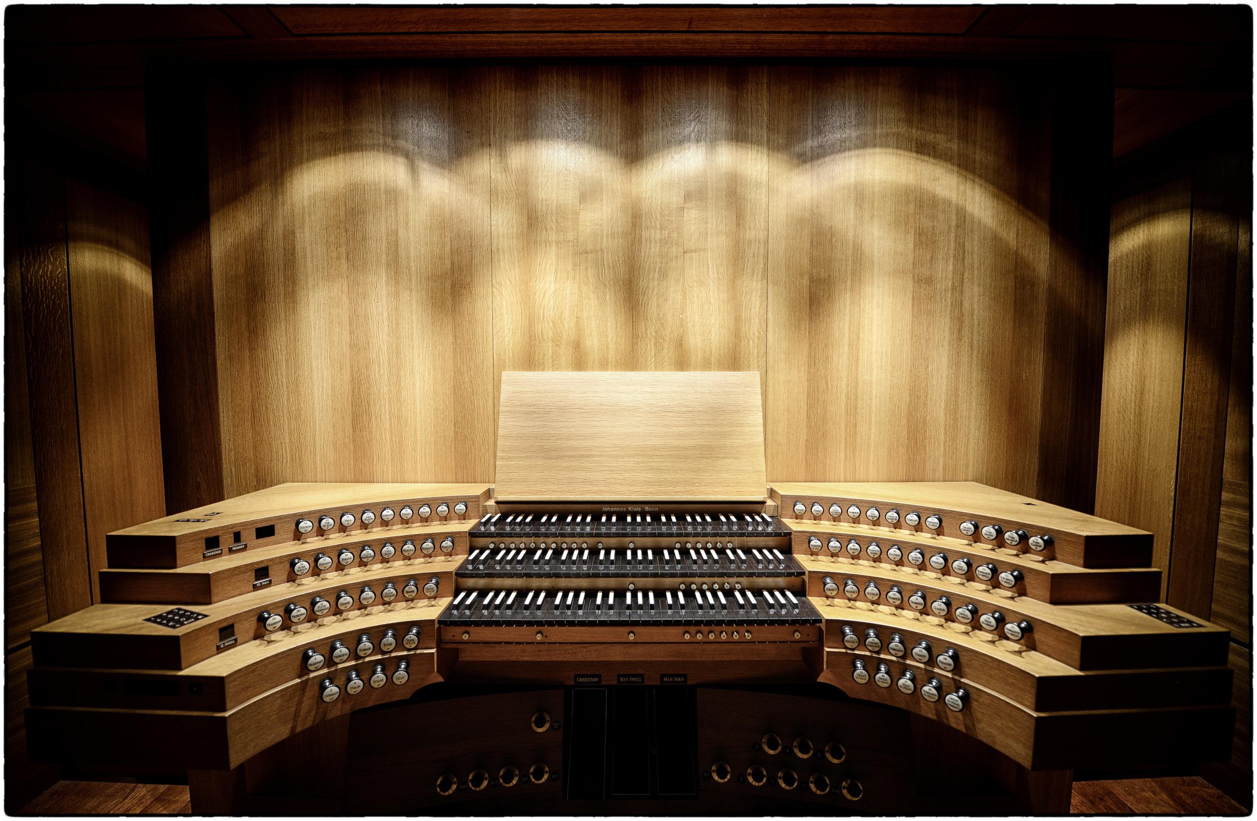 Organ_3775.jpg