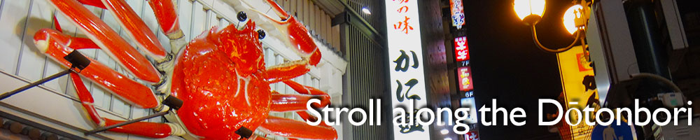 10-Free-things-to-do-in-Osaka-Stroll-along-the-Dotonbori.jpg