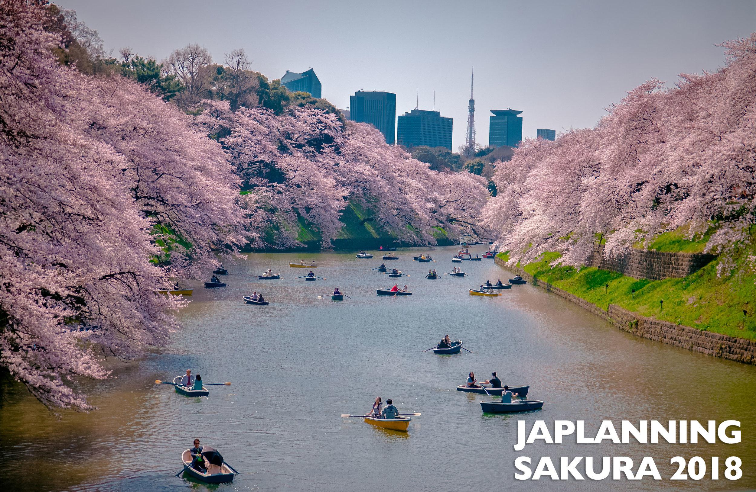 SAKURA-2018-JAPAN.jpg
