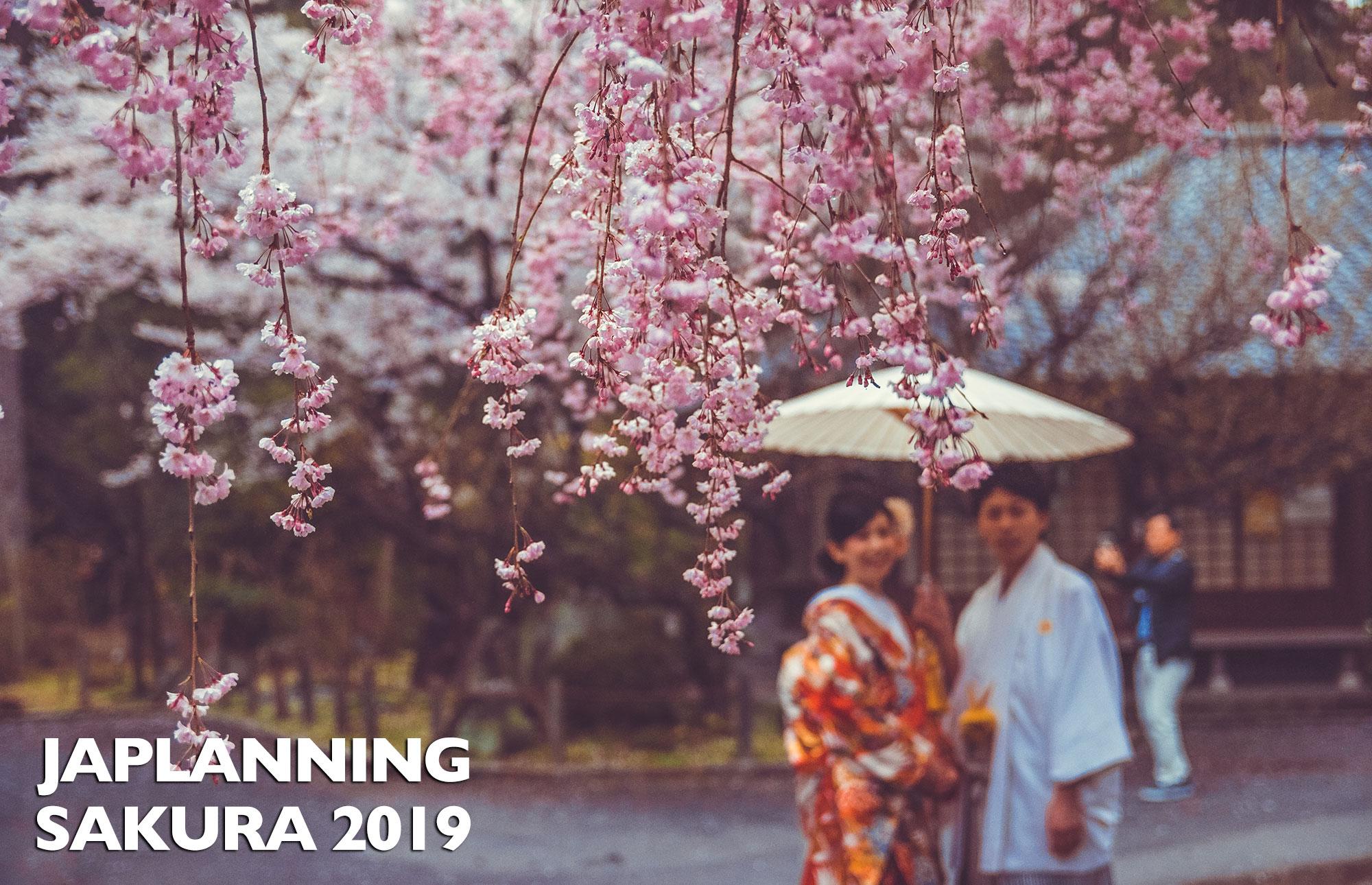 JAPAN SAKURA 2019