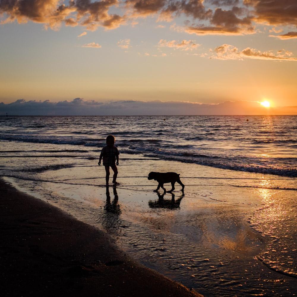 ©Valérie Jardin - street dogs-9.jpg